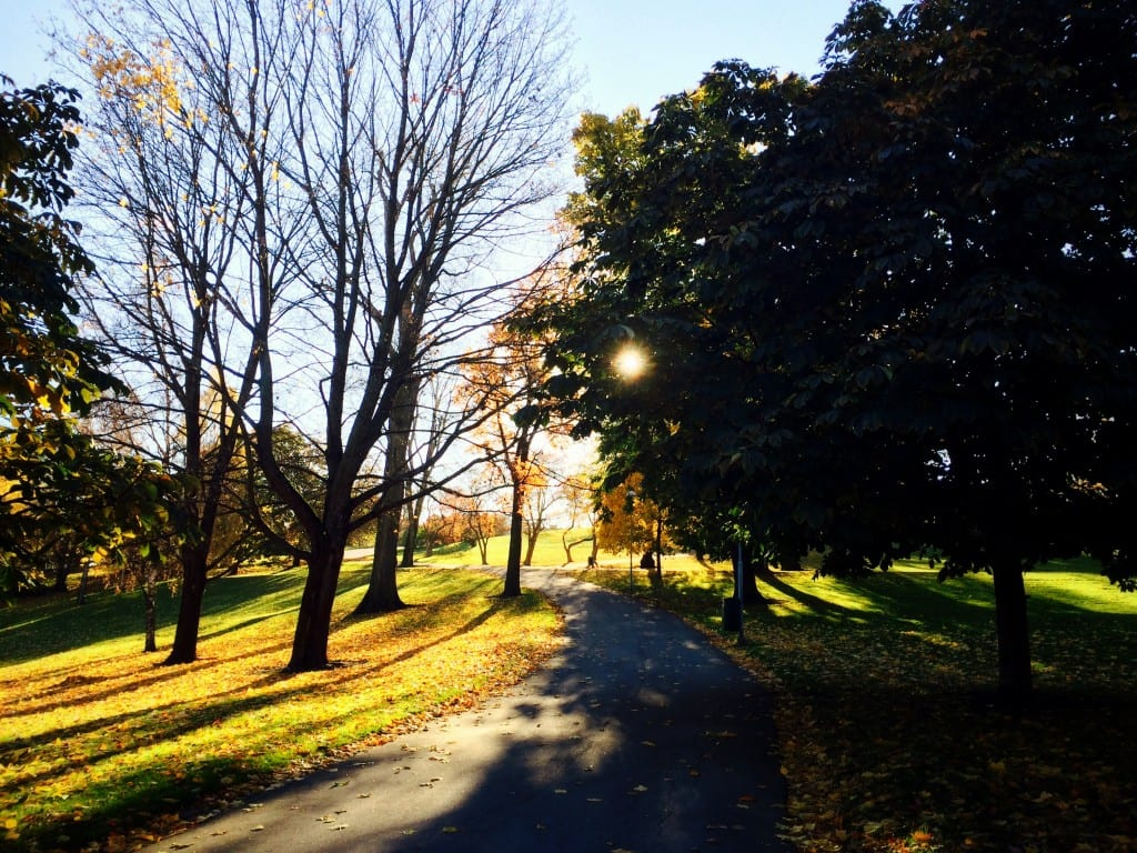 Vaikka syksyllä paistoikin aurinko, ei valo riitä täyttämään D-vitamiinivarastojamme loppuvuodeksi.