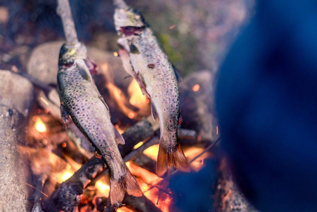 Kurkumiinin kanssa nautittavia omega-3 -rasvahappoja saat esimerkiksi kalasta