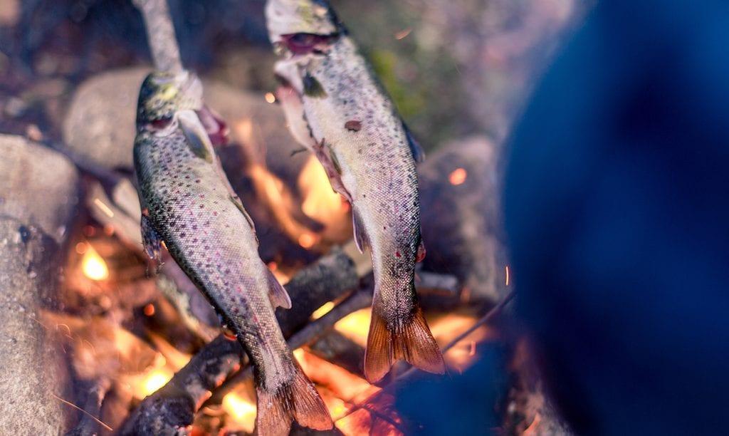 eettinen ruokavalio kala