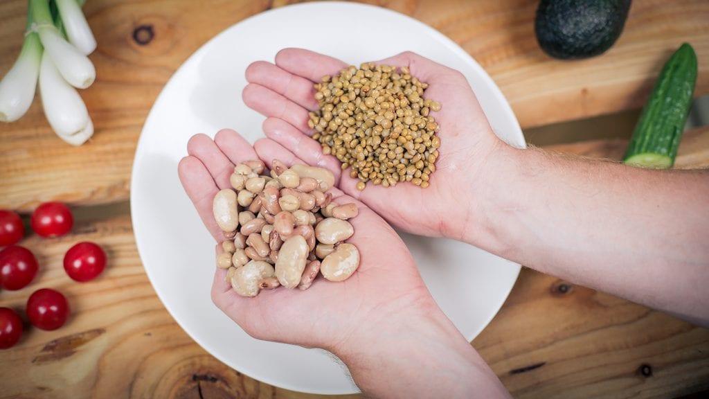 eettinen ravinto kasvis
