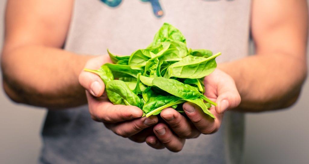 terveellinen ja eettinen ruokavalio